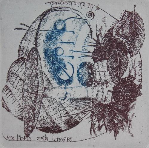 Exlibris (ets) van de Belg Erik Lenaers, gebaseerd op Erik en het klein insectenboek.  vervaardigd door Anita Christiaens (1998).