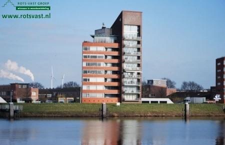 In voormalig landelijk gebied te Oosterhout ligt nu de enige Erik Pinksterblomstraat van ons land met laag- en hoogbouw