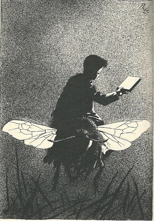 """Gelukkig scheen de maan nogal helder..."""" Erik op een vlinder getekend door Karel Thole (1940)"""