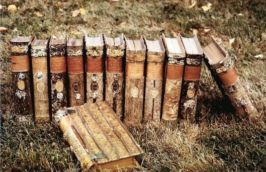 Enkele van de boeken uit de 'Holzbibliothek' van Hohenheim voor de foto in de natuur geplaatst