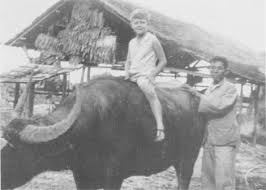 De jonge Rudy Kousbroek op een karbouw in 1939 (DBNL)