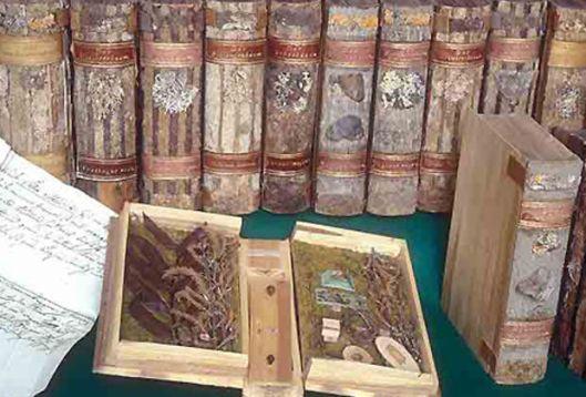 13 van de 135 banden vervaardigd door pater Candidus Huber, tegenwoordig in museum Frauenfeld (foto P.Armand Kraml)