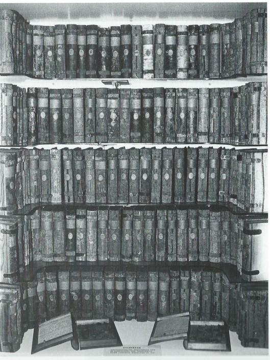 Delen uit de xylotheek van de Hogeschool van Harderwijk (Enschede, Natuurmuseum)