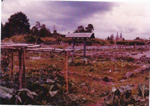 Ruïne van het internaat van de Planterts School Vereniging, Brastagi, bij het naderen van de Nederlandse troepen in 1946 (op enkele vrijstaande gebouwen na zoals het ziekenhuis) in brand gestoken en verwoest
