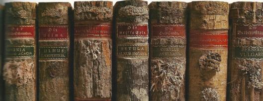 Enkele delen uit 'Die Holzbibliothek auf Burg Guttenberg'