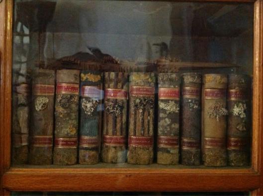 'Holzbücher' in de kloosterbibliotheek Strahov, Praag (foto Rachel Ropeik)