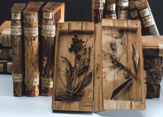 'Holzbücher' in de kloosterbibliotheek van Lilienfeld, Oostenrijk (foto Harald Schmid)