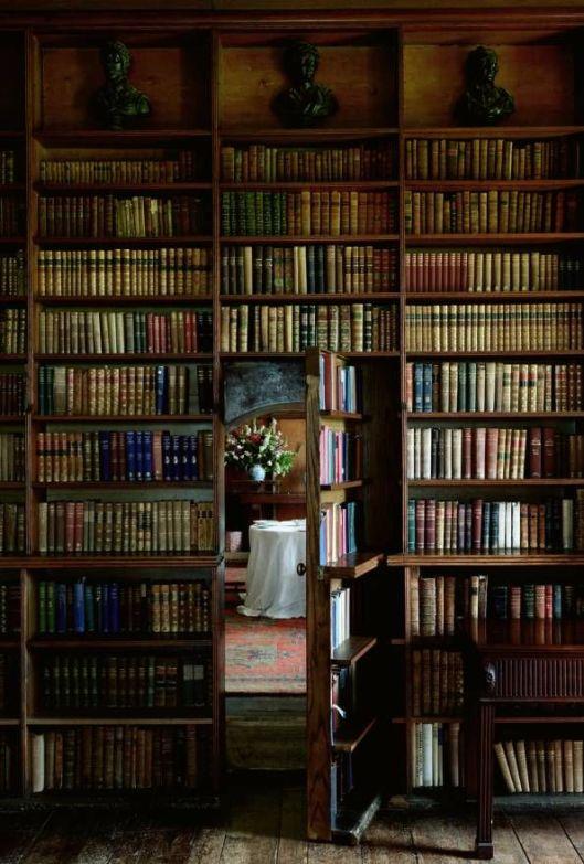 Geheime bibliotheekdeur in een kasteel (Simon Brown)
