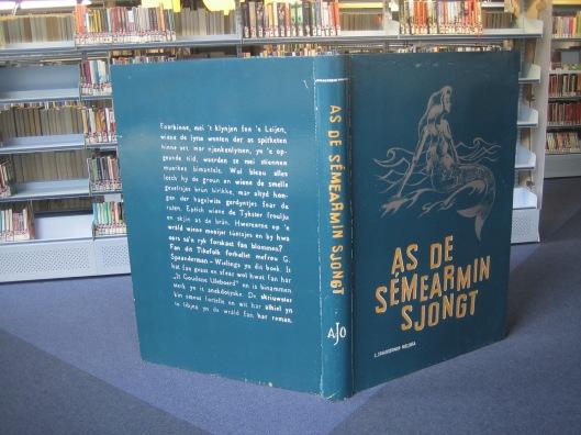 Omslag stenen boek in openbare bibliotheek Leeuwarden
