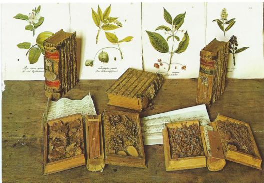 Enkele voorbeelden uit de 'Holzbibliothek' op Burg Guttenberg am Neckar, Neckarmühlbach, Duitsland. Zie verder mijn bijdrage: 'Xylotheken in Nederland en het buitenland'.