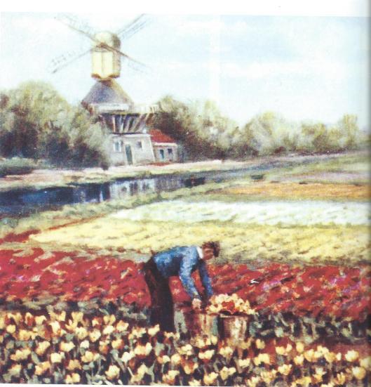 Fragment schilderij van bloembollenveld met molen op prentbriefkaart (uit een serie van 15)