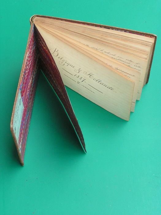 Albumpje van Frans reisverslag uit 1877