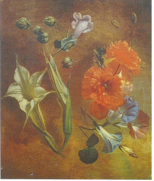 Bloemen door Albert Steenbergen