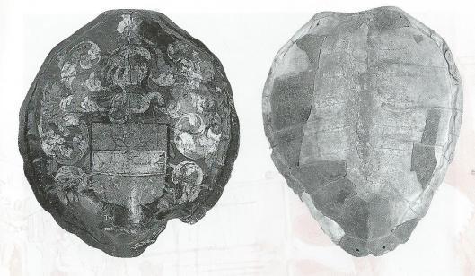 Aan verzamelaar van oudheden Willem Hekking is het te danken dat o.a. bovenstaande schildpadschilden bewaard zijn gebleven, tegenwoordig aanwezig in het Amsterdam Museum. Links beschilderd met met het geslachtswapen van de Heren van Bennebroek., vermoedelijk uit circa 1640-1650. Dergelijke schilden dienden overigens niet ter verdediging maar als decoratie.