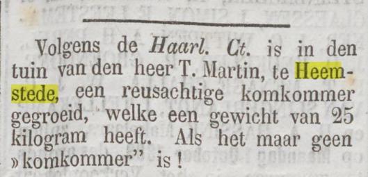 Bericht uit De Tijd van 17 september 1883