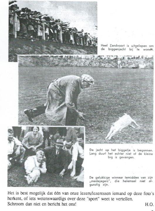 Vervolg van biggenjacht in Zandvoort, 1937